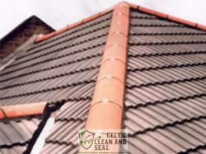 ridge-tile-repairs-1