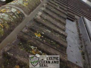 ridge-tile-repairs-4