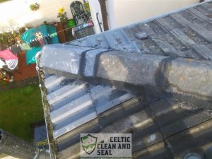 ridge-tile-repairs-5